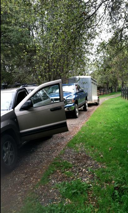 Our llamavan leaving my driveway.