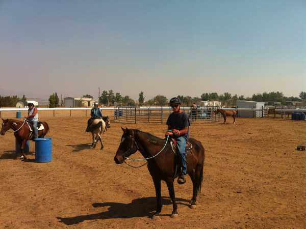 This is Fred on a wild horse - taken just today... working in the arena created to train the wild ones.