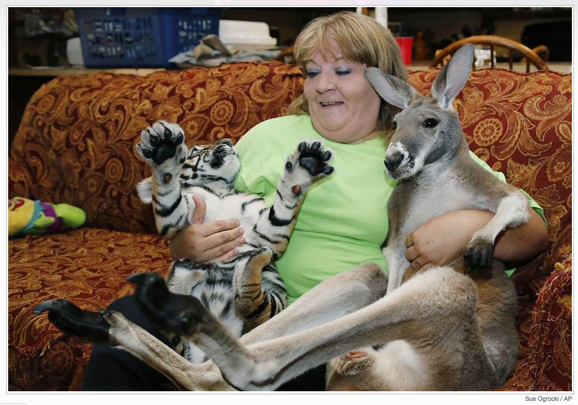 Garold Wayne Interactive Zoological Park in Wynnewood, Oklahoma.  I cannot believe she has them on her couch!