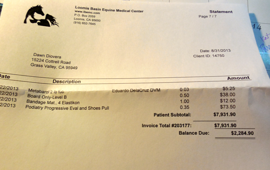 The invoice for a month of ICU.  (I just received this bill today.  I had paid the previous invoice of $5647.)