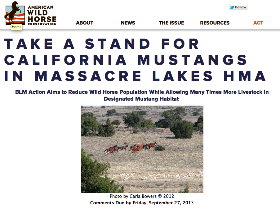 CLICK image to go to the simple and easy petition to help this very strong group help the California Mustangs!  (Thank you - I appreciate it!)
