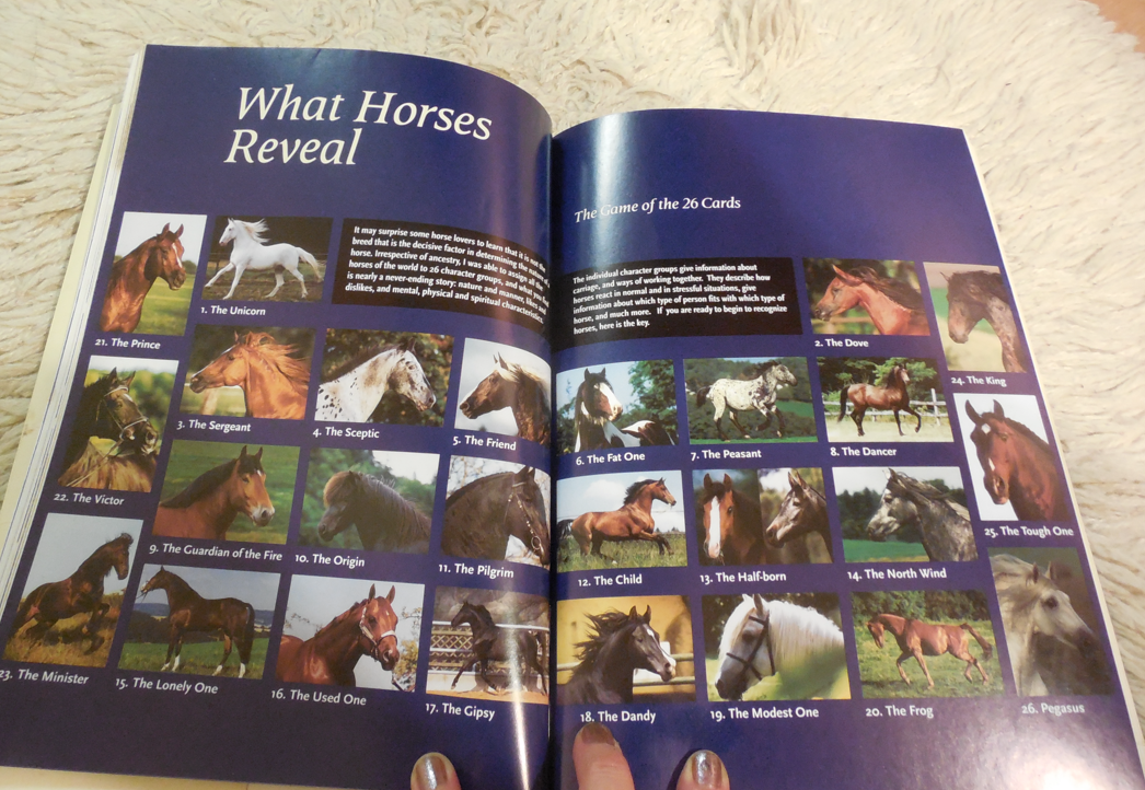 I found this page fascinating... all these different types of horses.