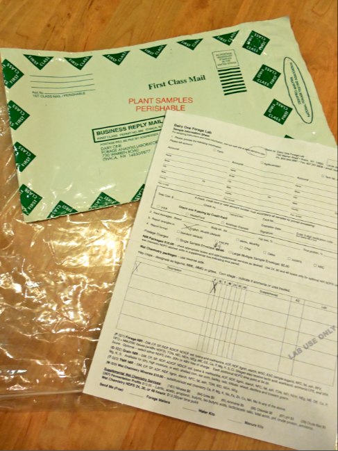 The kit... order form, baggie and mailing envelope.  Easy.