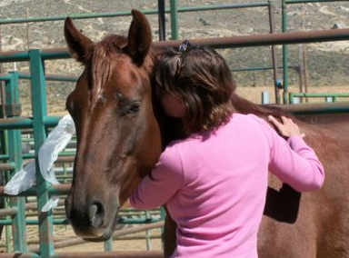 I hadn't met him before the auction... here was our first meeting in  his BLM paddock, after I had won him.