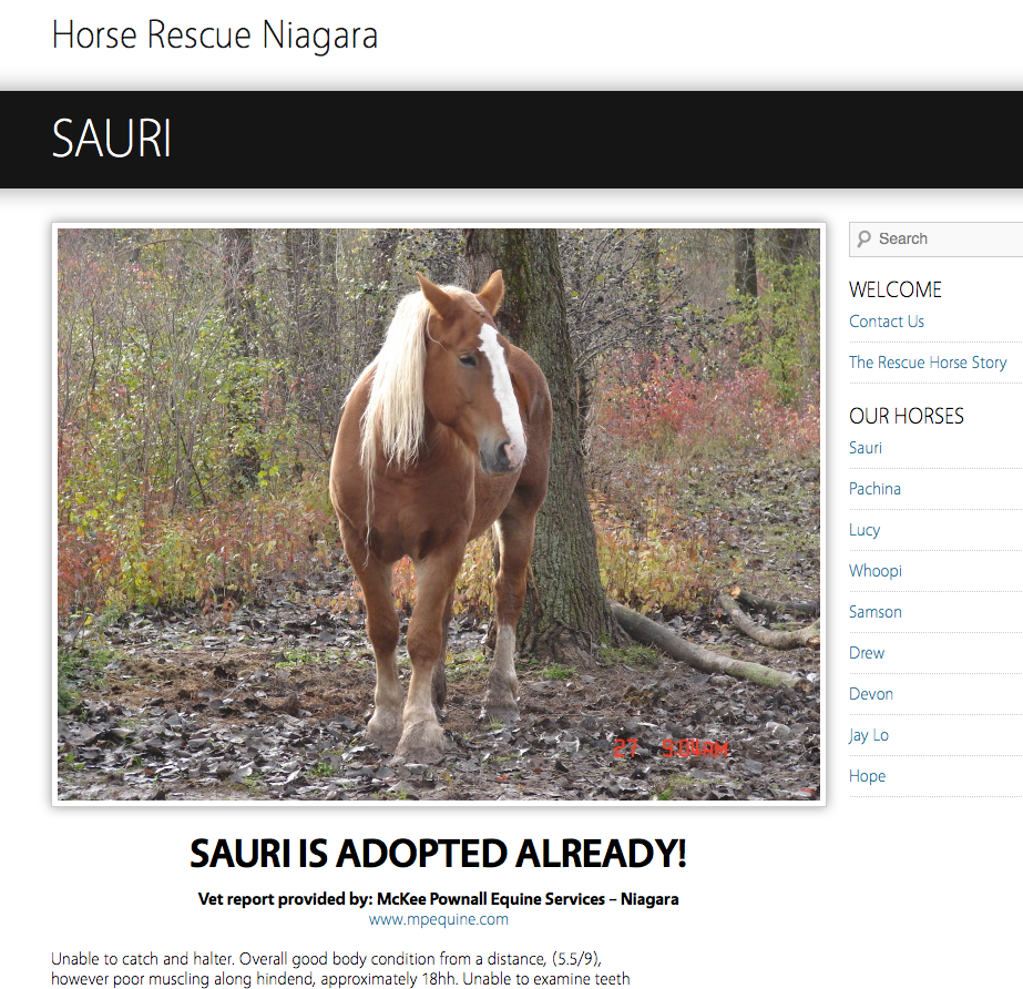 Wow!  They found great homes via community support and outreach - fast!