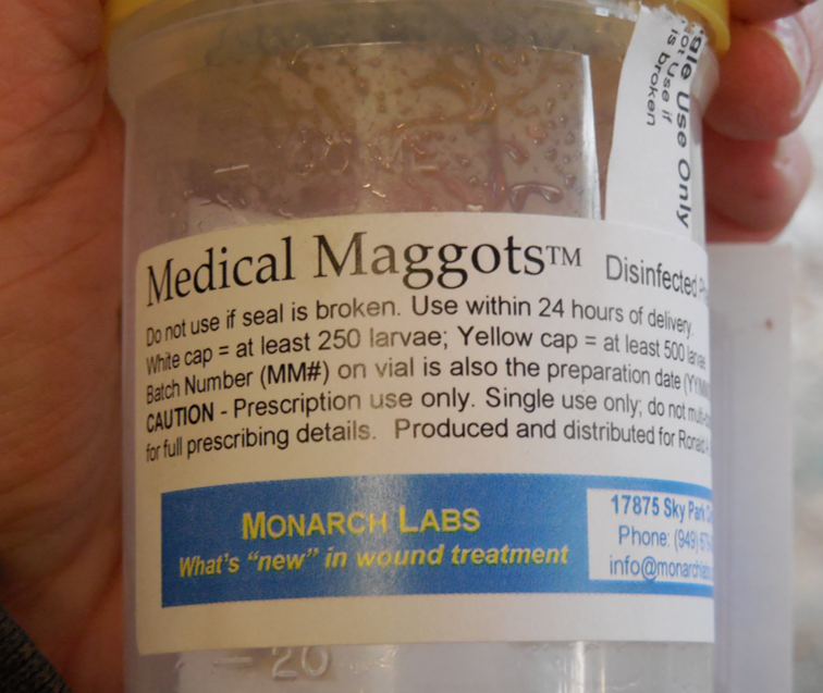The container of medical maggots.  Very sterile.  They come in a tiny piece of gauze, wrapped up in the bottom of this jar.