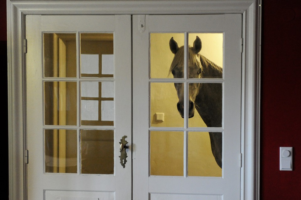 "When the powerful ""Xaver"" storm swept through northern Germany in December, Stephanie Arndt brought her three-year-old Arabian horse Nasar inside. Since then, the horse has grown quite comfortable with the arrangement, and stays indoors."