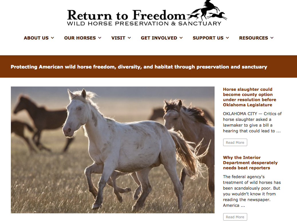 Click image to learn more about their campaign for the wild horses!