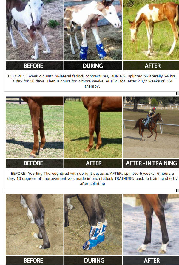 Amazing results!  I'm sure the owners felt hopeless until they learned about DynaSplint.  I had no idea...