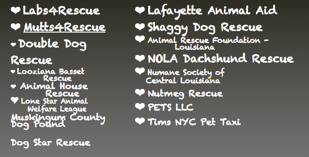 I think these are the recommended shelters to first find the dog for you and then have Greg transport him to you...