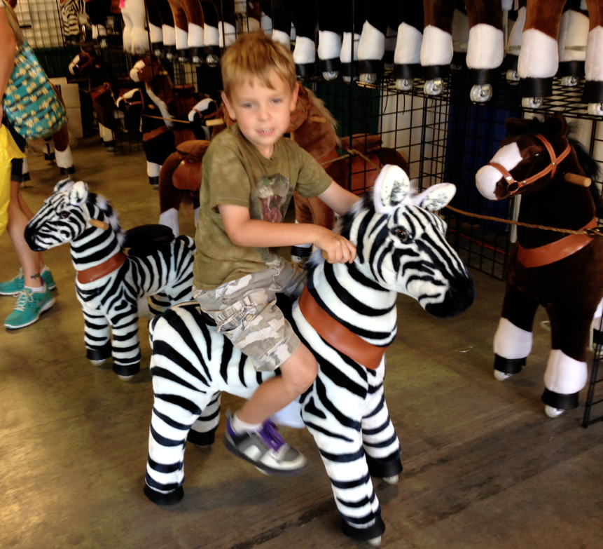 This was a kid in their booth, riding a zebra.  You motion up and down with your hips to make the center-sprung horse - move.