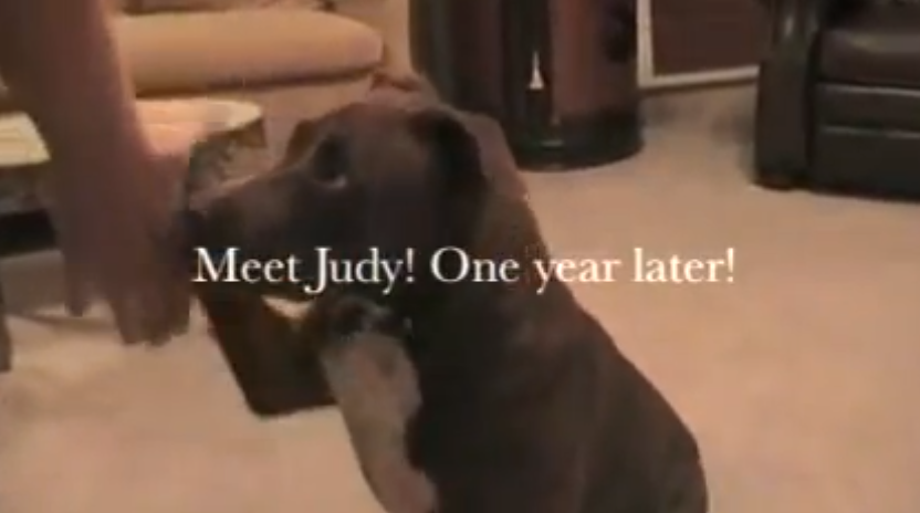 Click image to watch this video of Judy.