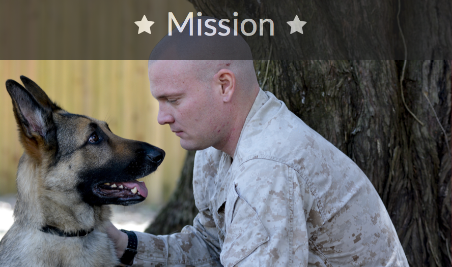 K9s FOR WARRIORS!  Click to go to website.