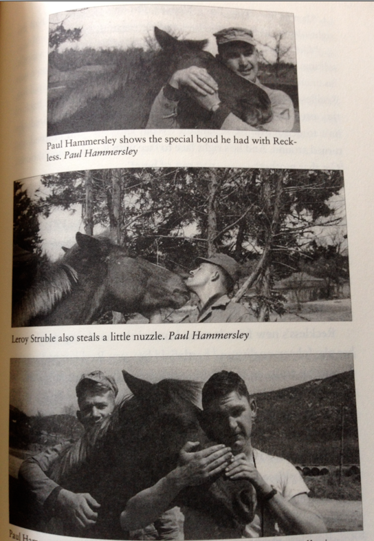 I love these shots of Sgt. Reckless getting love from the troops!