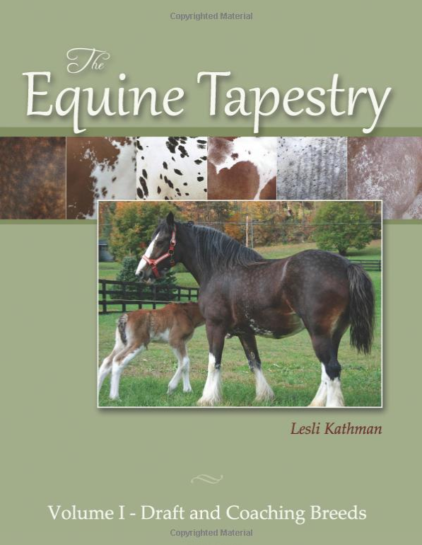 Click here to go to THE EQUINE TAPESTRY blog.