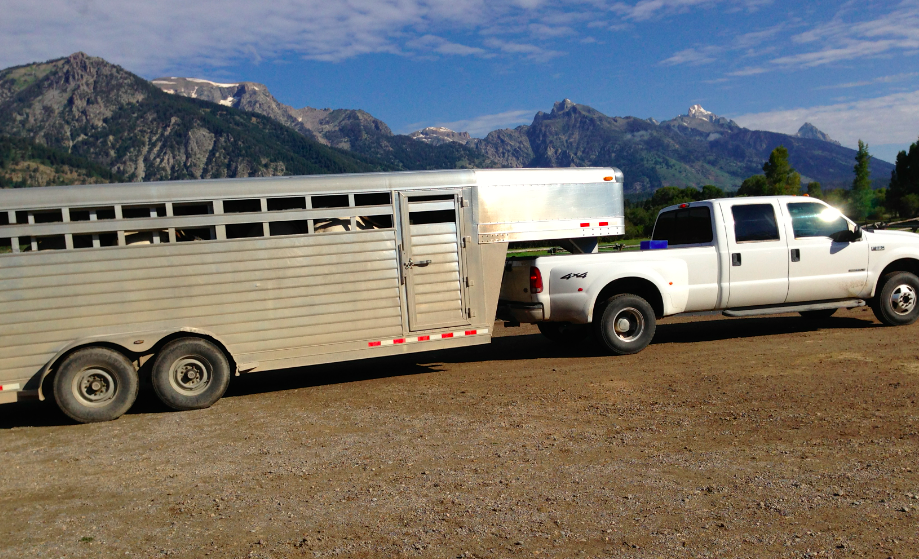 This is the truck, loaded up, for an all-day ride off the Ranch and in the Park.  It was glorious!