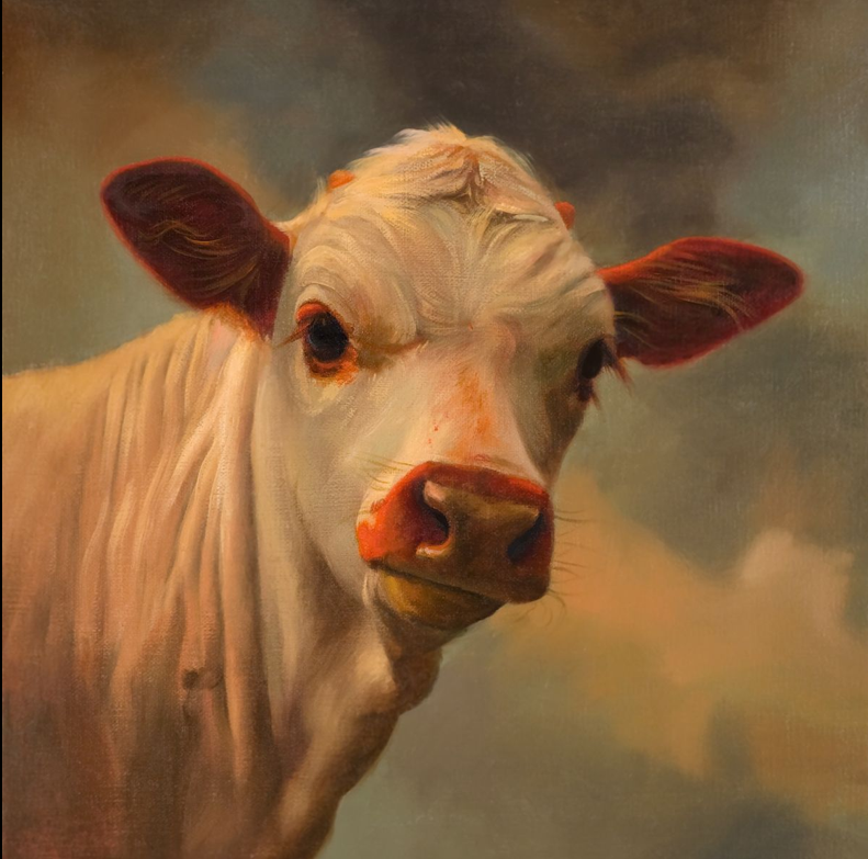buckeye calf