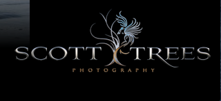 Click to go to Scott Tree's website.