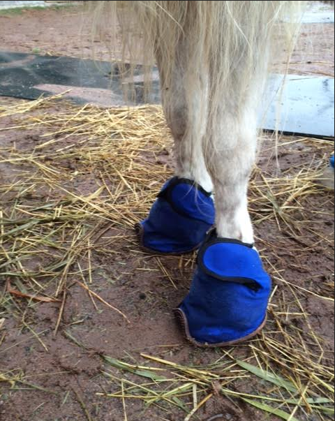 An Easy Ice Boot Idea For The Coronet Band Or Hoof