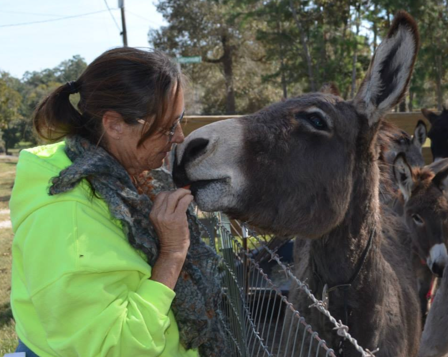 Our November Bucket Fund Donks!  This is Marjorie from TMR getting to know one of the '3-Strikes 11' BLM Donks she has named, Freedom.