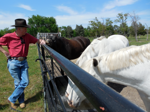 This is a photo I took of Michael Johnson at his ranch (I was so lucky to visit) with his boys... Joe Ben, Shine and Blue.