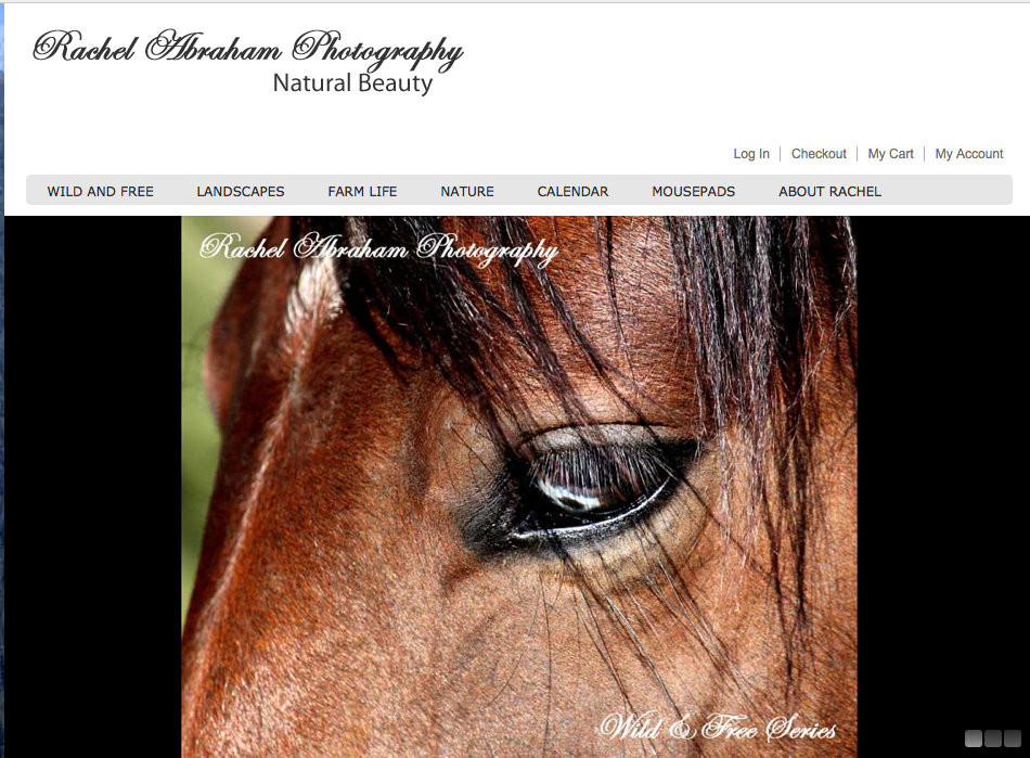 Click to go to her website... she sells lots of her images... Fun!  Go, Rachel, go!