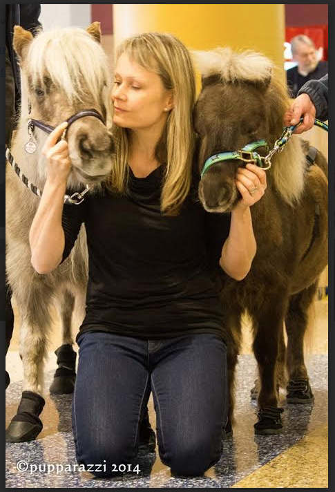 Windchill's Legacy has an outreach program they developed to teach kids about animal husbandry! This is Peanut and Spanky!