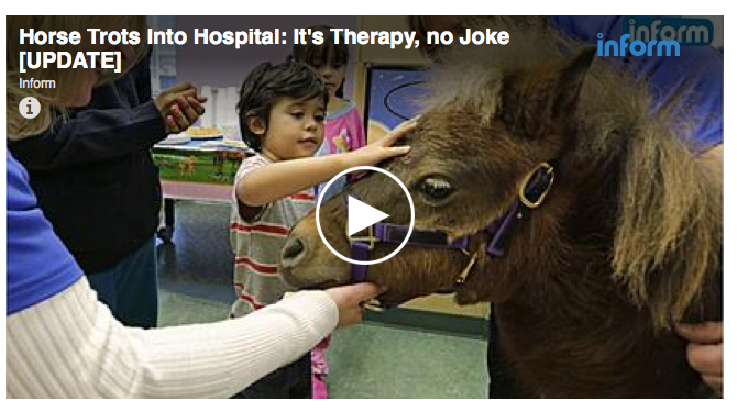 This story is about a mini who visited a Children's Hospital. Love that.