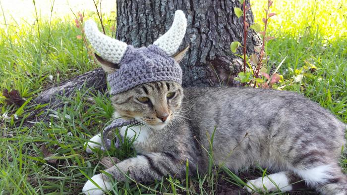 kitty-cat-viking-hat-04