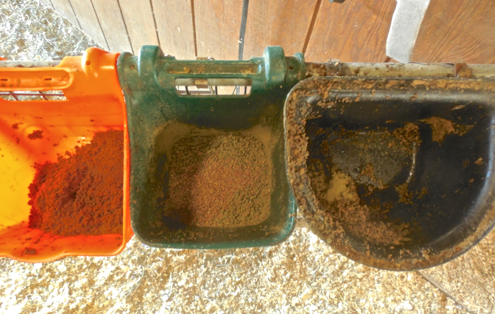 In the meantime, I've worked on refilling her food court.  All day long, she has access to CoolStance (coconut), Low Carb Senior and soaked beet pulp pellets.  I have also added Enzion Horse Hoof supplement to whichever bucket is closest.