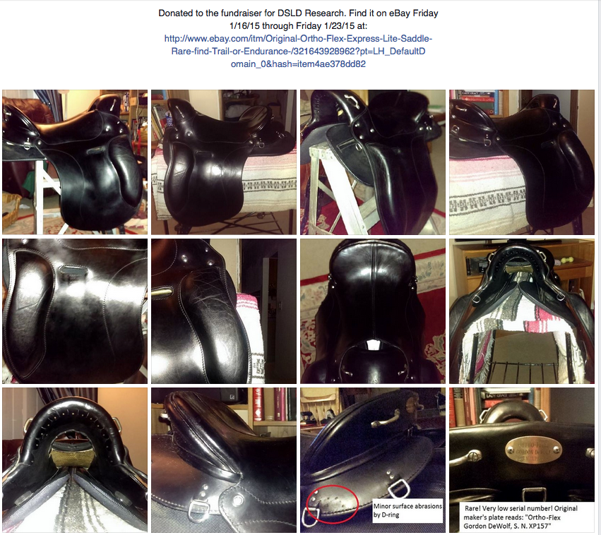 More photos of the saddle for sale on Ebay.