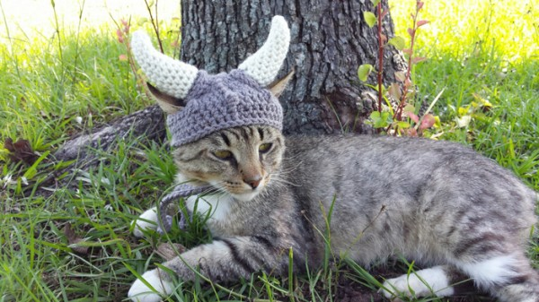 kitty-cat-viking-hat-04-600x337