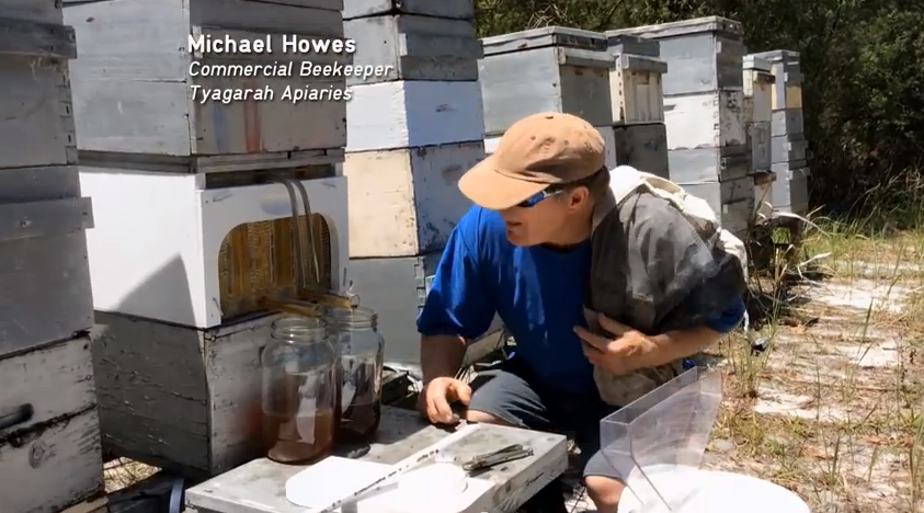 Large beekeeping operations can flip a switch and have hydraulic power harvest all the honey at once!