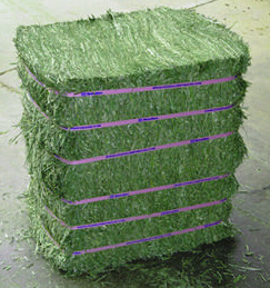 This is how these compressed bales appear outside of their plastic covering.  They are bound very tightly.