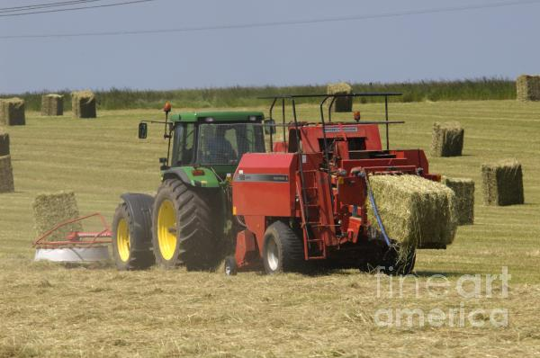 I wish I could get my hay from one grower again...