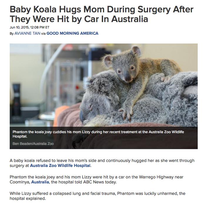 Click image to go to original news story.