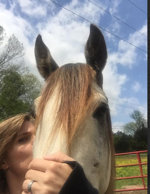 His foster Mom thinks the world of him... the most polite stallion she has ever met.
