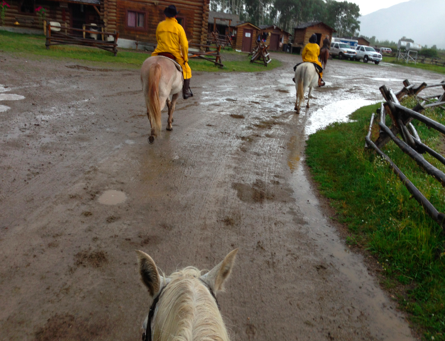 Of course, I forgot to take any photos as we trotting and splashed in the rain.  It was wonderful... but then the thunder and lightening started, so we headed back.
