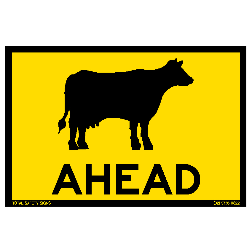 We saw a handmade 'cattle ahead' sign tied to the front bumper of a truck and trailer parked on the side of the highway. Huh?
