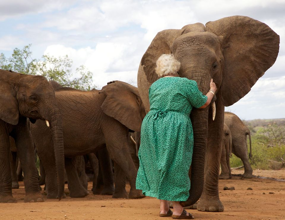 Daphne Sheldrick has dedicated her life to raising orphaned elephants.