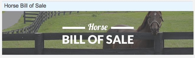 HOW MUCH DOES A HORSE COST Buying Vet Check Bill of Sale – Free Horse Bill of Sale