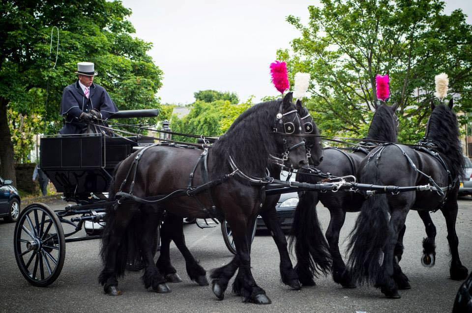 Ruby Carriages uk