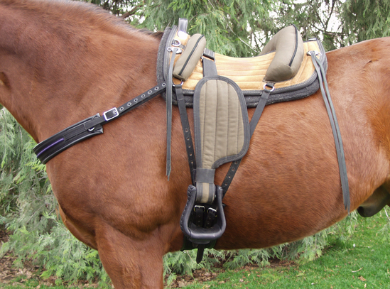 This is an image from the Rebecca saddle website.