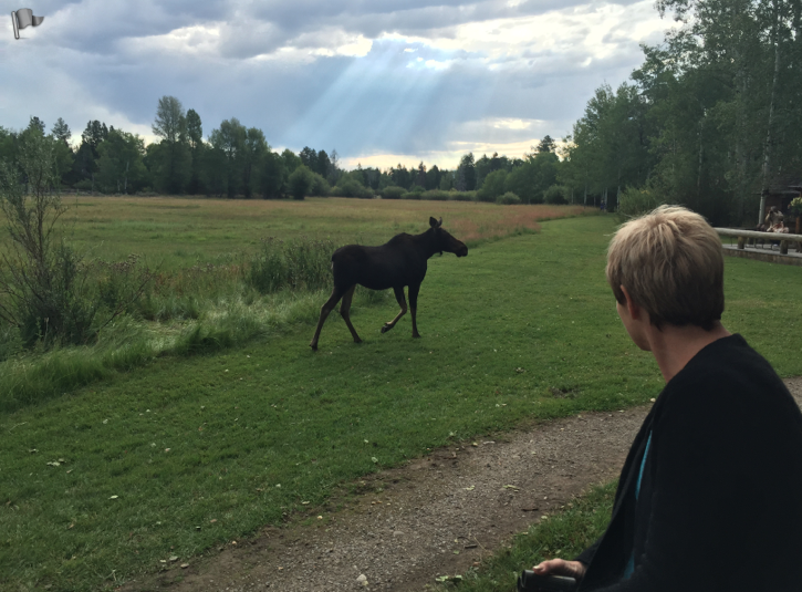 And our friend Fran with the moose. Such an amazing place.