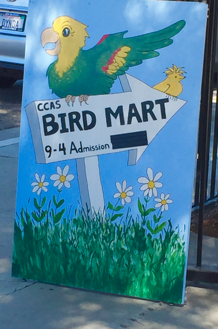Yup, it was a small, homestyle bird mart...