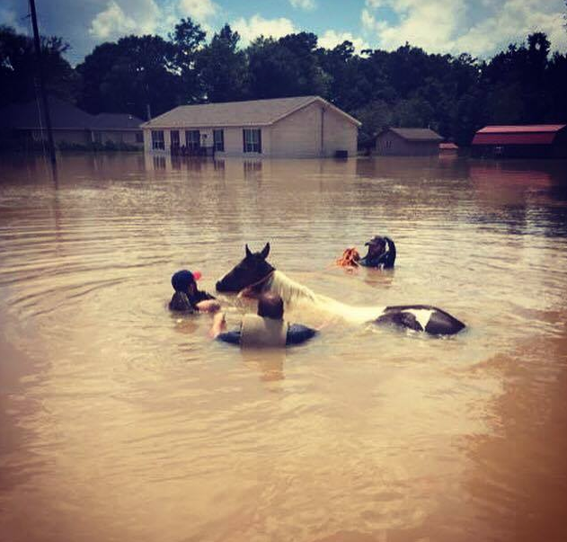 Jackie was led by brave rescuers after she had been in high water for 4 days.