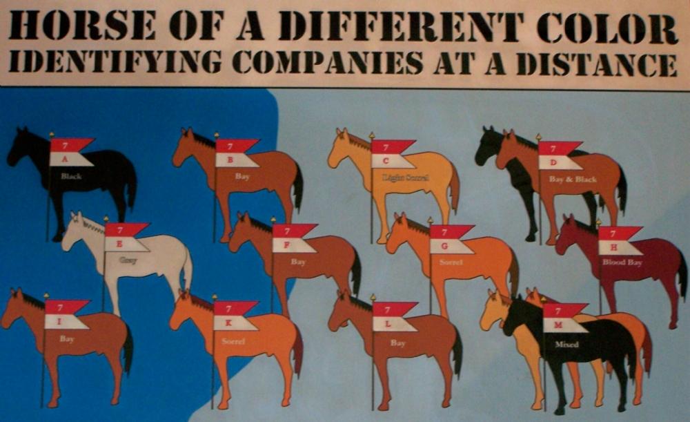 horsecolorslarge
