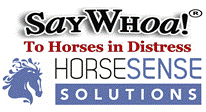 Um vídeo sobre COMO DETECTAR ÚLCEROS no seu cavalo ?!  Uau!  Muito útil... 1