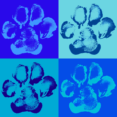 How To Make A Paw Print Painting