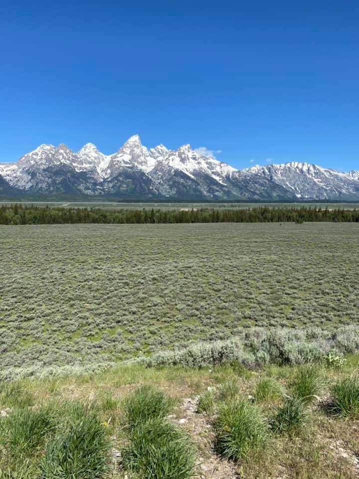 Nossa viagem anual a Wyoming e ao R Lazy S Ranch - foi cancelada. Mas eu tenho essas fotos frescas! 4